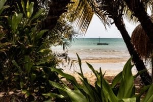 interesting facts about Mozambique