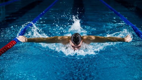 interesting facts about swimming