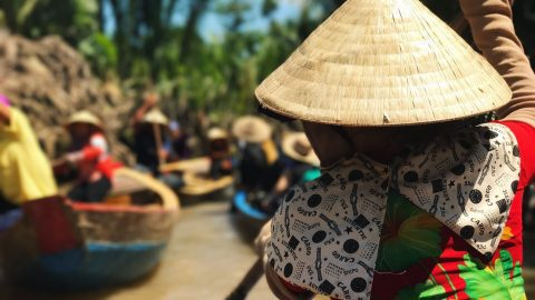 interesting facts about the Mekong