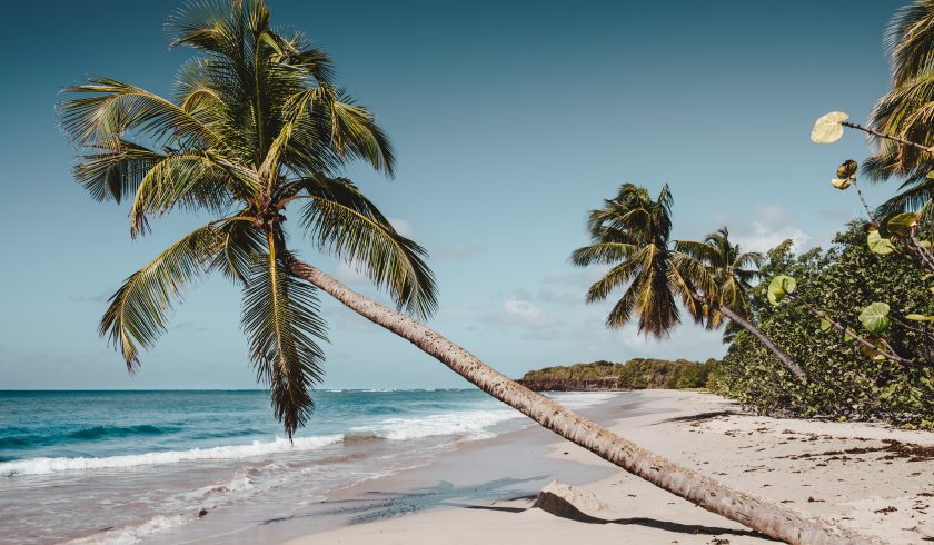 interesting facts about Martinique