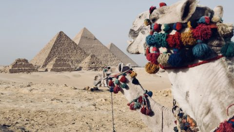 Interesting facts about Egypt