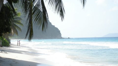 interesting facts about BVI