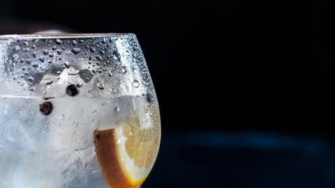interesting facts about gin