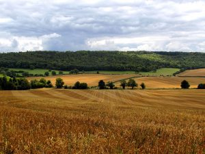 Facts about Buckinghamshire