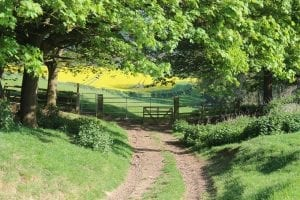 Interesting facts about the cotswolds