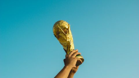 facts about the world cup football