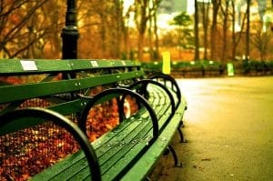 interesting facts about Central Park