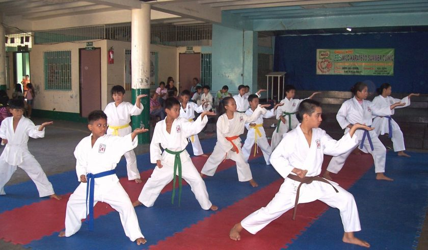 facts about karate