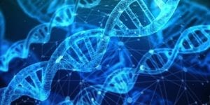 FACTS ABOUT DNA